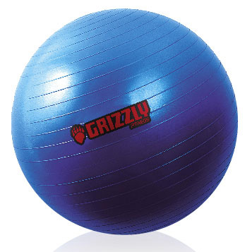 Фитбол (Training Ball) 55 см Grizzly 8100-27