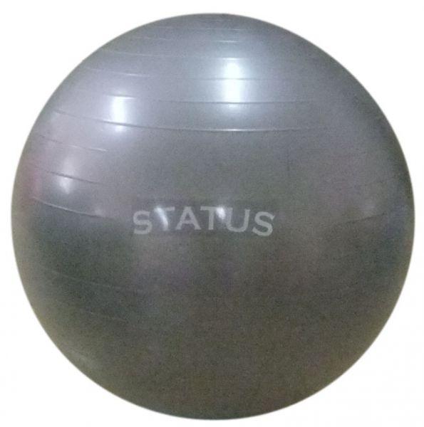 Гимнастический мяч с насосом FKA-22 STATUS (55 см)