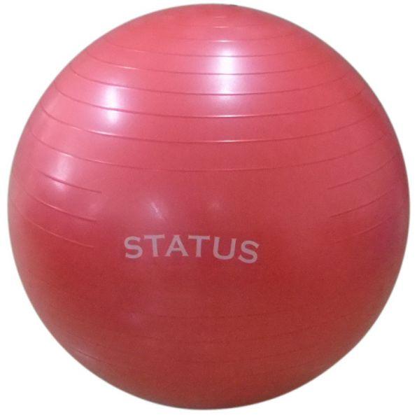 Гимнастический мяч с насосом FKA-26 STATUS (65 см)
