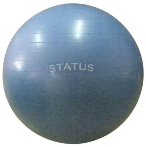 Гимнастический мяч с насосом FKA-30 STATUS (75 см)