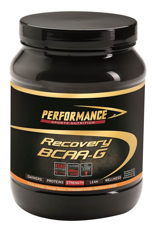 Recovery BCAA-G Performance (500 гр)