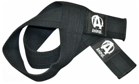 Лямки Animal Lifting Straps